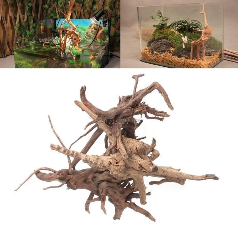 Как подготовить корягу для аквариума? коряга в аквариуме, подготовить корягу аквариума, усохшее дерево, ивы осокорь, паводок, обработка коряги, антисептики, белый налет коряга, аквариум уход содержани