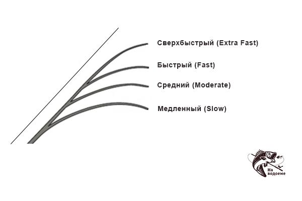 Строй спиннинга: как определить, какой выбрать, виды строя