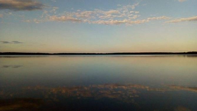 Клепиковские озёра, рязанская область. рыбалка, озеро белое. отели рядом, фото, видео, как добраться