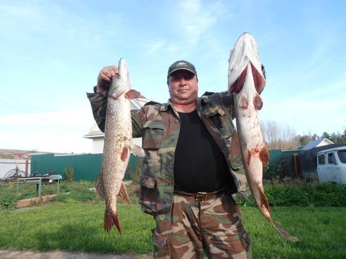 Рыбалка в удмуртии. отчеты рыбаков. обсуждения на форуме