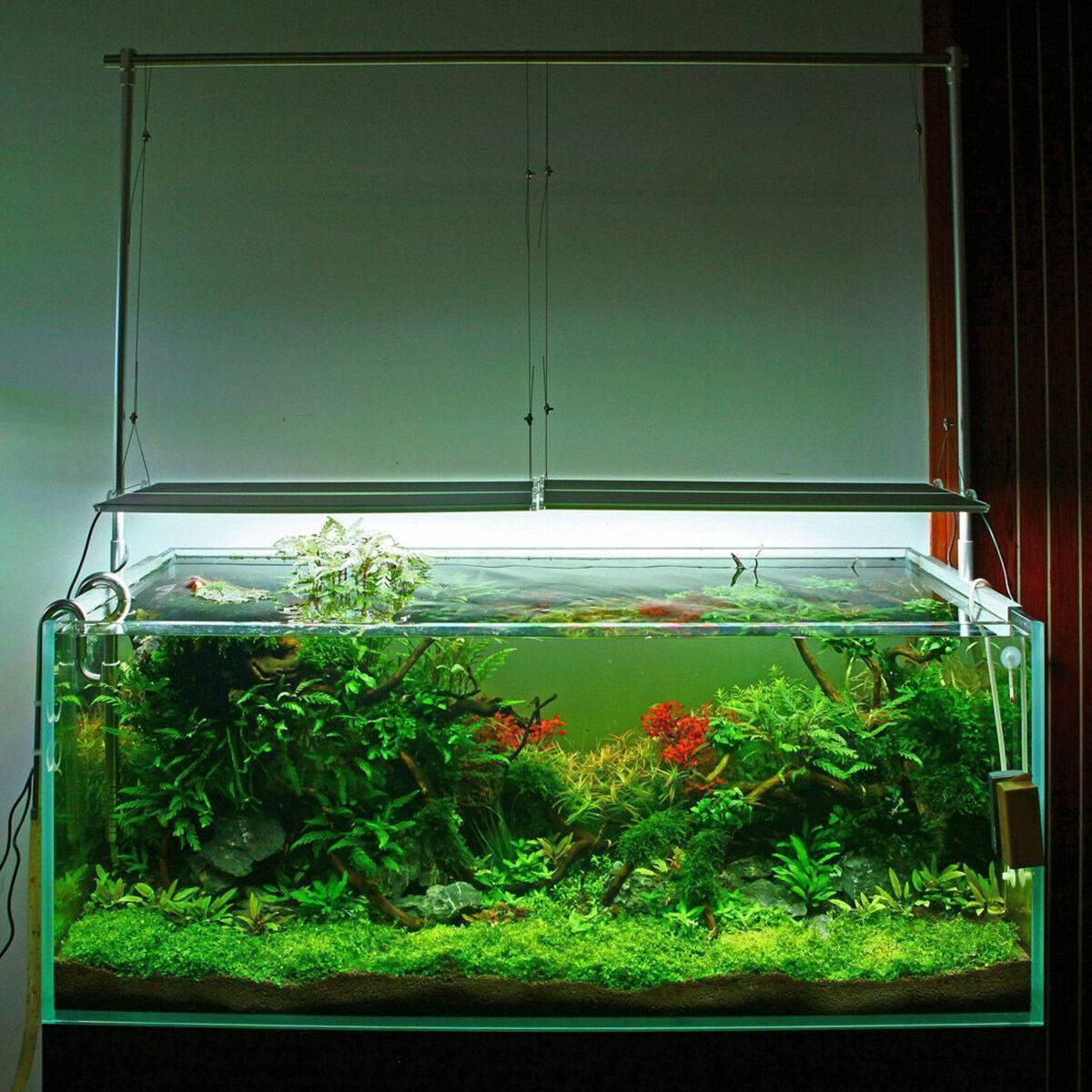 Светодиодное освещение для аквариумных растений: светодиоды и светодиодные массивы   аквариумные рыбки