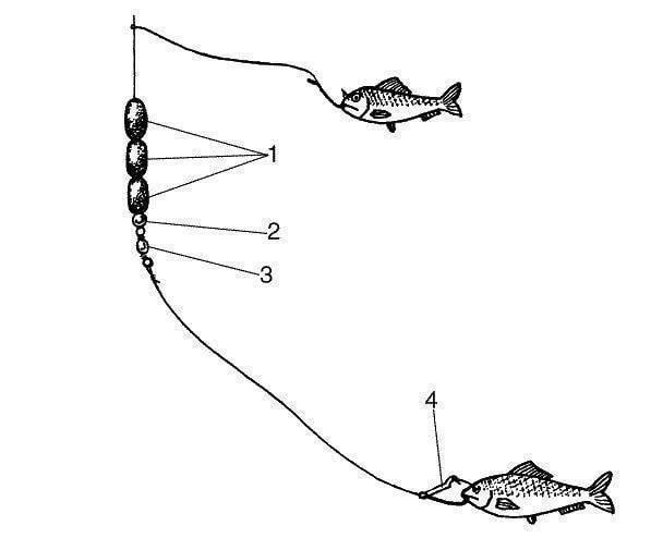 Камбала — среда обитания и рыбалка