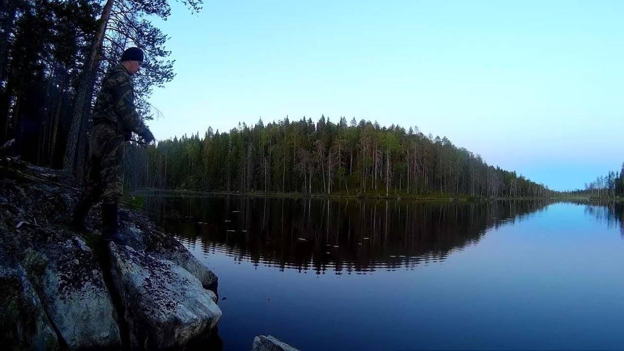 Сибирская тайга глазами путешественника и видеоблогера сереги сибиряка