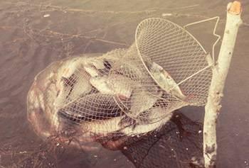 ✅ из чего сделать обруч для рыболовного садка. виды и изготовление садка для рыбы своими руками - sundaria.su