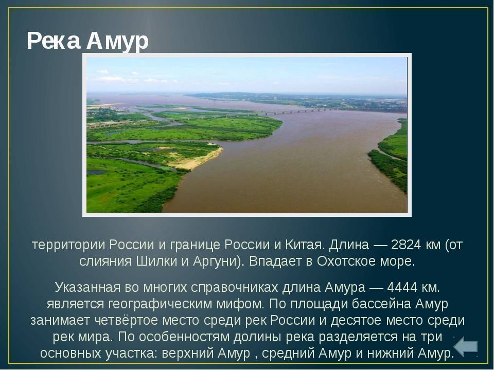 Река эльба (лаба) на карте мира: исток, притоки, устье, города, растения и животные, рыба, достопримечательности