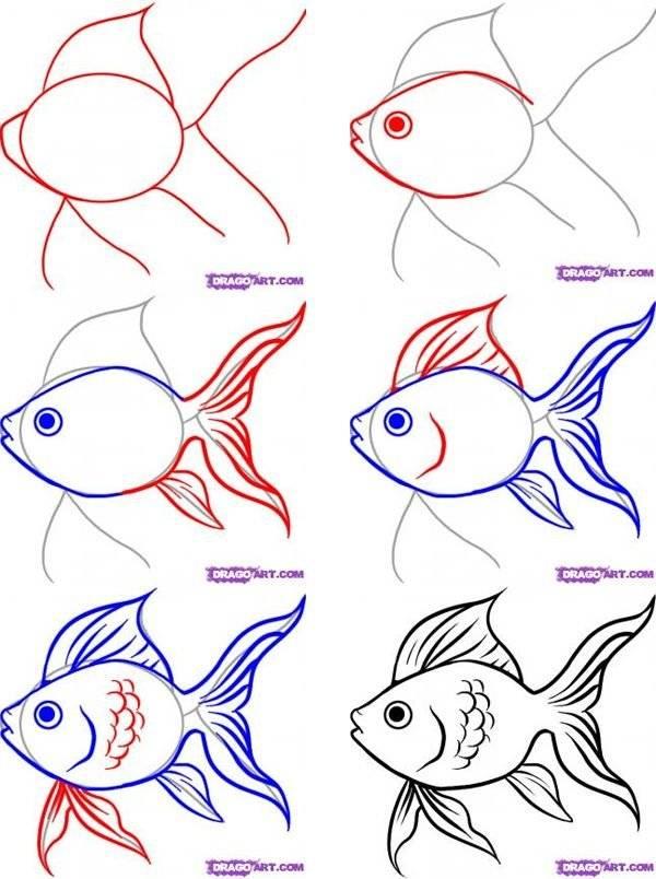 Как нарисовать рыбку карандашом - поэтапные мастер-классы для начинающих