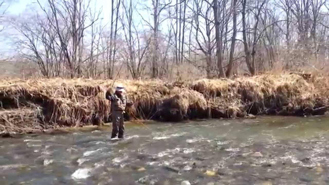Где лучше всего ловить рыбу в приморье: лучшие реки для рыбалки