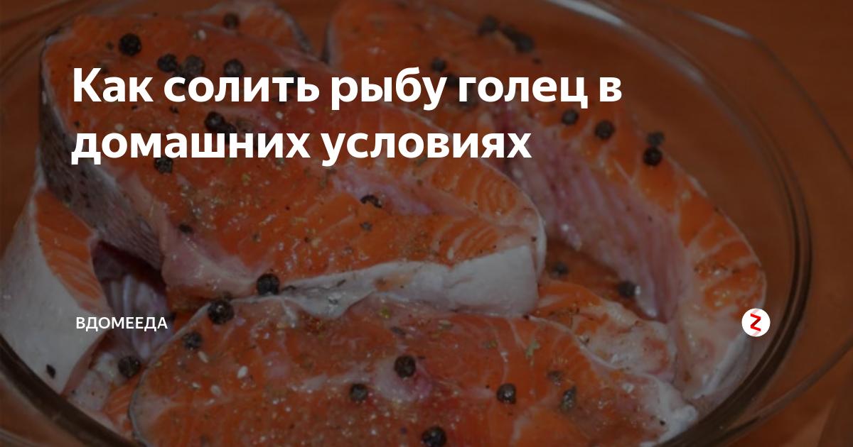Голец что за рыба и как ее готовить