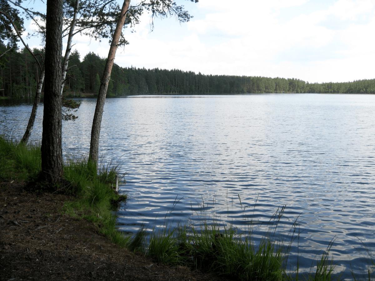 Рыбалка в Ленобласти. 8 самых «клёвых» озёр региона