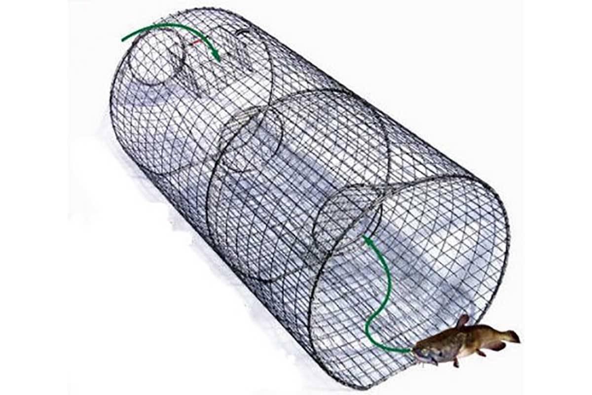 Морда для ловли рыбы своими руками из бутылки. как сделать ловушку для мелкой рыбы из пластиковых бутылок (малечница, малявочница) как сделать из бутылки ловушку для рыбы