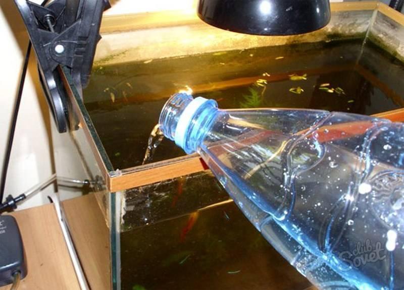 Сколько отстаивать воду для аквариума и нужно ли это делать