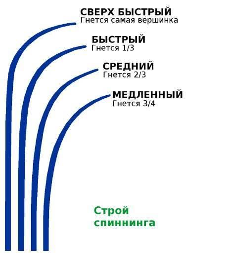 Строй удилища: что это такое, обозначения и виды (быстрый, средний, медленный)