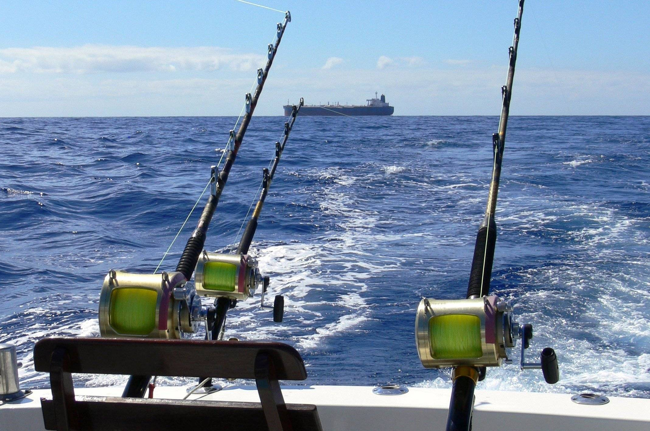 Ловля судака на троллинг: (снасти для троллинга и скорость лодки)