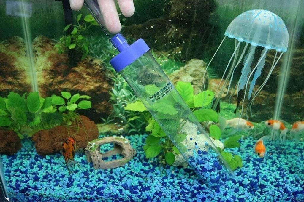 Как почистить аквариум для рыбок (с иллюстрациями)
