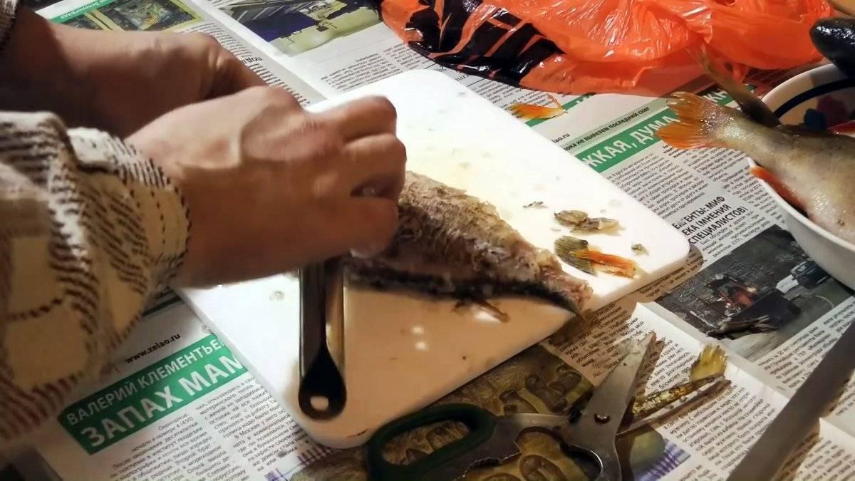 Лайфхак: как быстро, легко почистить рыбу от чешуи и не испачкать кухню