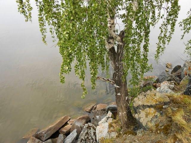 Озеро малое миассово, челябинская область. база отдыха, озеро на карте, отзывы, рыбалка, как добраться — туристер.ру