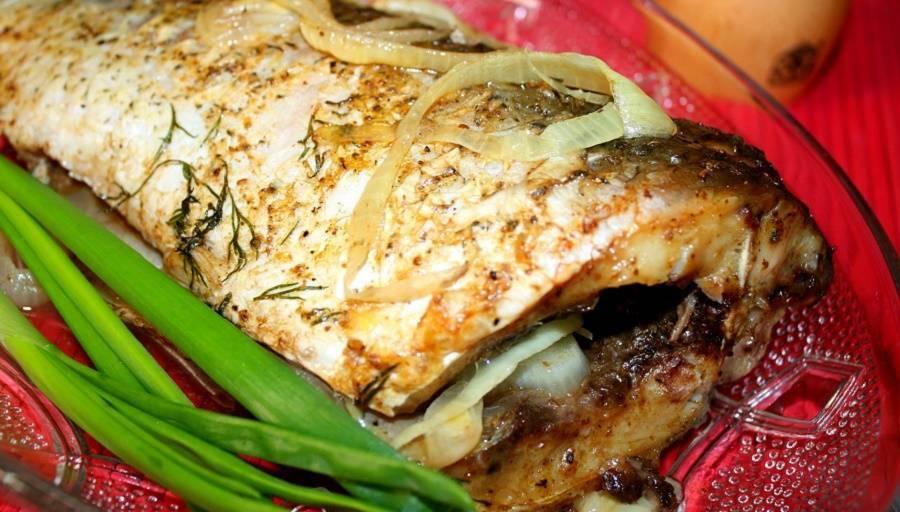 Вкусные и простые рецепты приготовления сазана в духовке