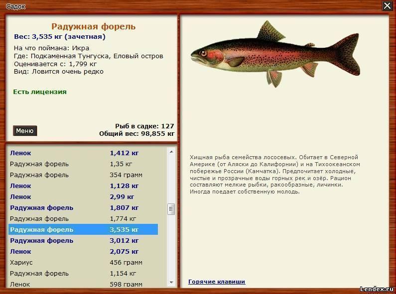Особенности оснастки зимней поплавочной снасти – рыбалке.нет