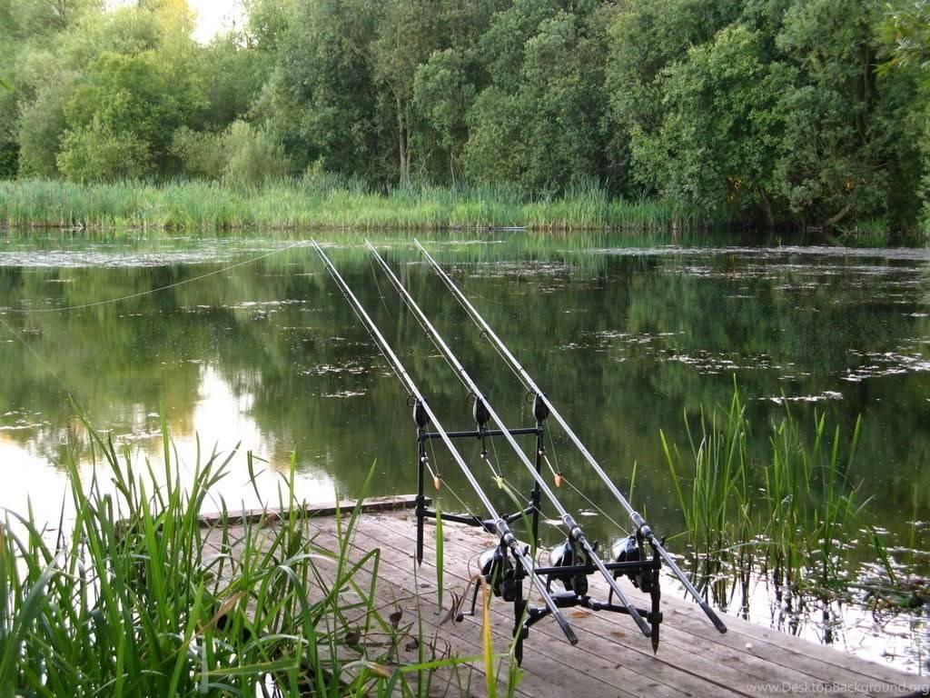 Рыбалка в Таганроге
