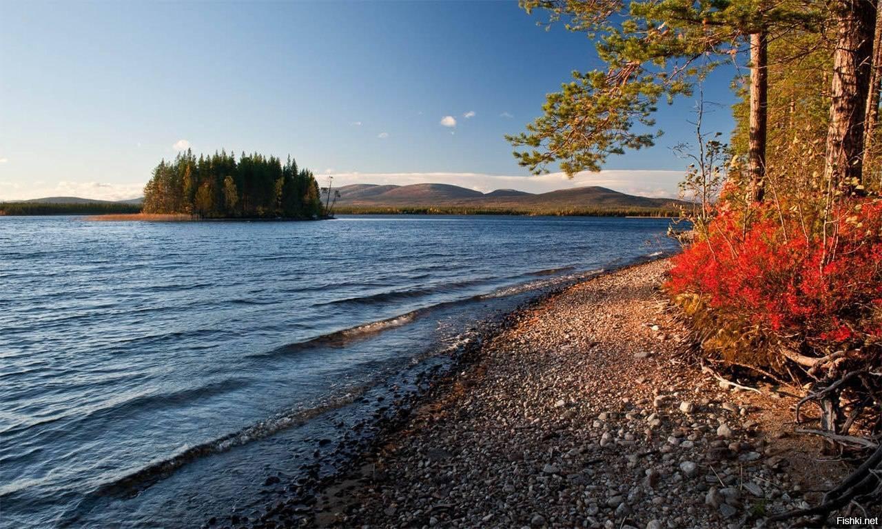 Рыбалка на озере лача, реках кинема, ковжа, свидь