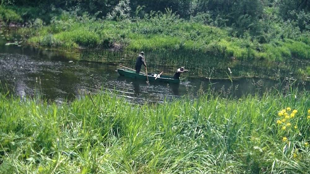 Рыбалка в подмосковье. лучшие места где можно порыбачить в московской области на сайте недвио