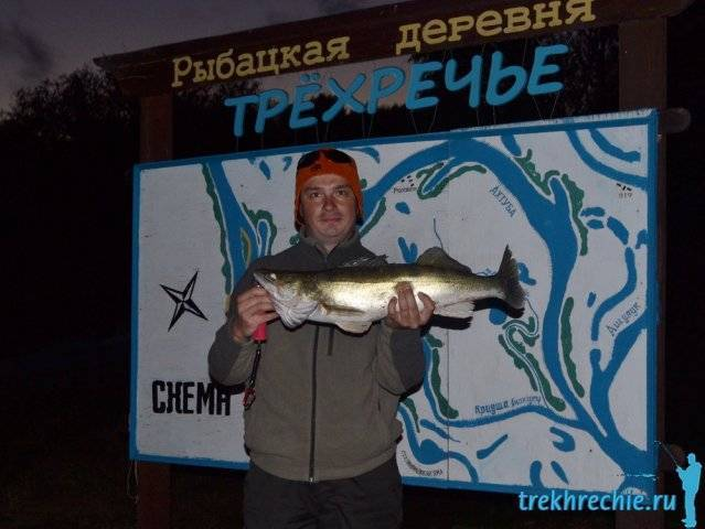Весенняя ахтуба - ловля судака на живца в апреле - рыбалка на ахтубе с комфортом - база трёхречье