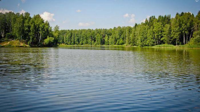 Рыбалка в павлово-посадском районе (г.о. павловский посад)