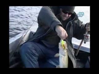 Троллинг на волге: особенности ловли, подбор снастей для рыбалки