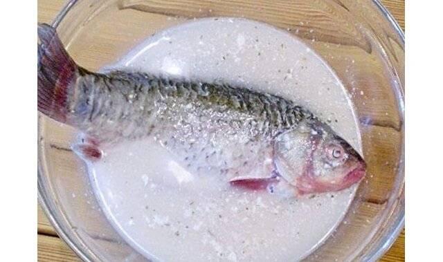Как избавиться от запаха рыбы: способы, профилактика