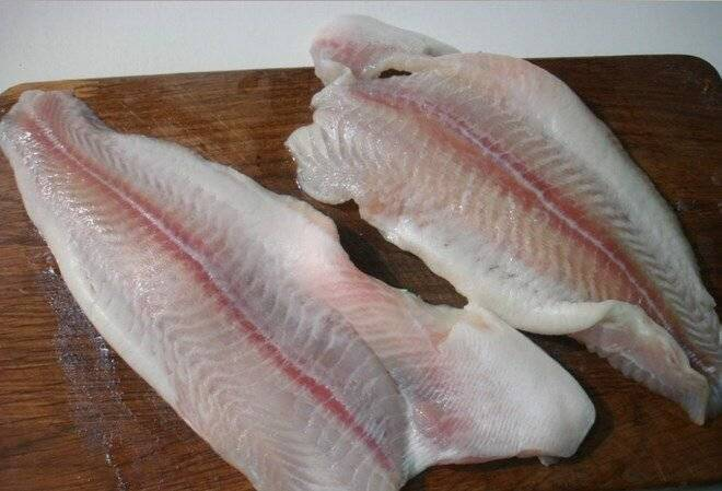 Пангасиус? что за рыба, польза и вред, свойства икры для здоровья