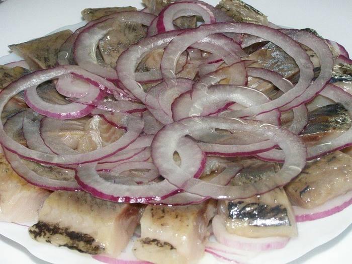 Засолка сельди: лучшие домашние рецепты с фото