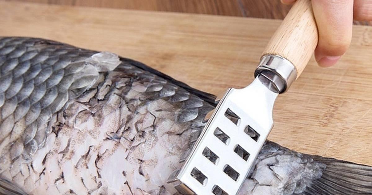 Как очистить рыбу от чешую при помощи специальных ножей
