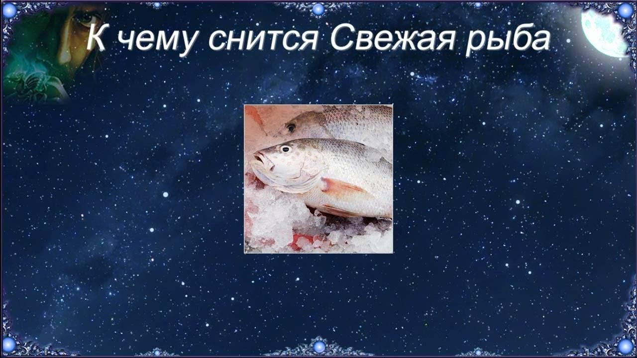 К чему снится мертвая рыба женщине?