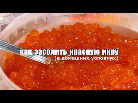 Как посолить икру форели в домашних условиях: лучшие рецепты