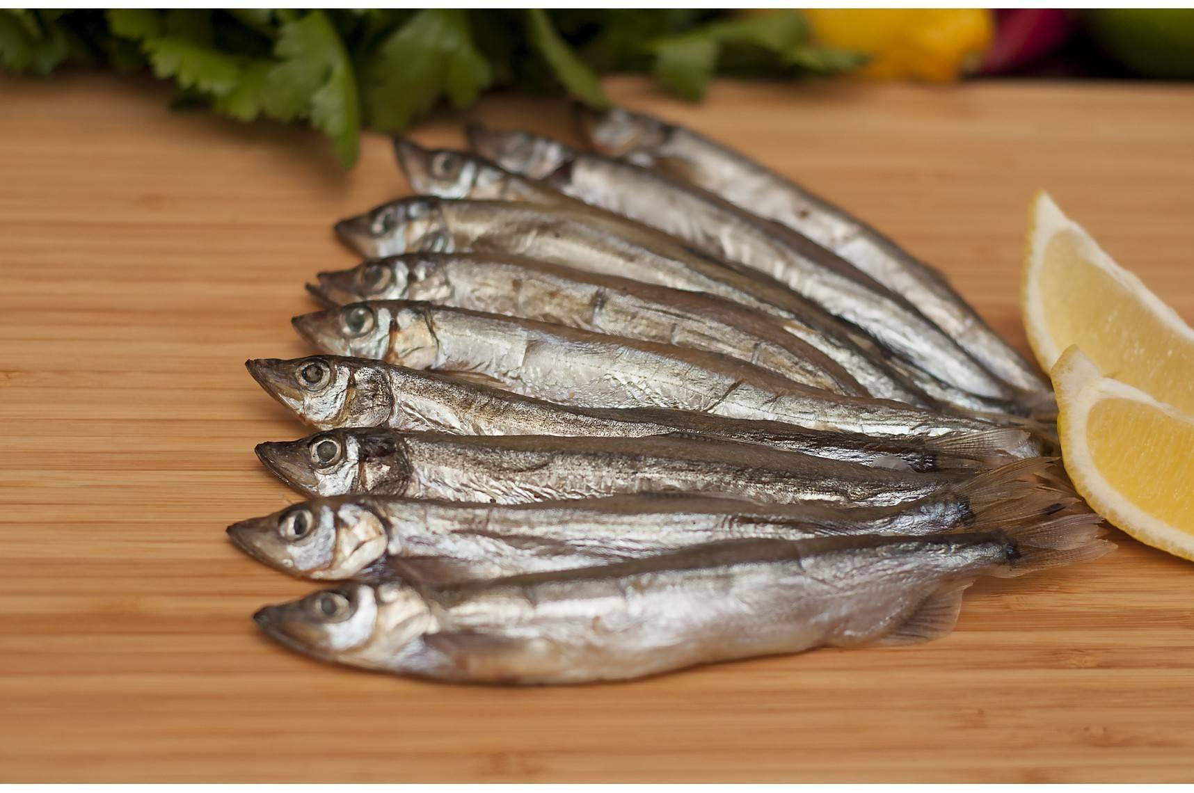 Мойва – польза и вред знаменитой морской рыбы |