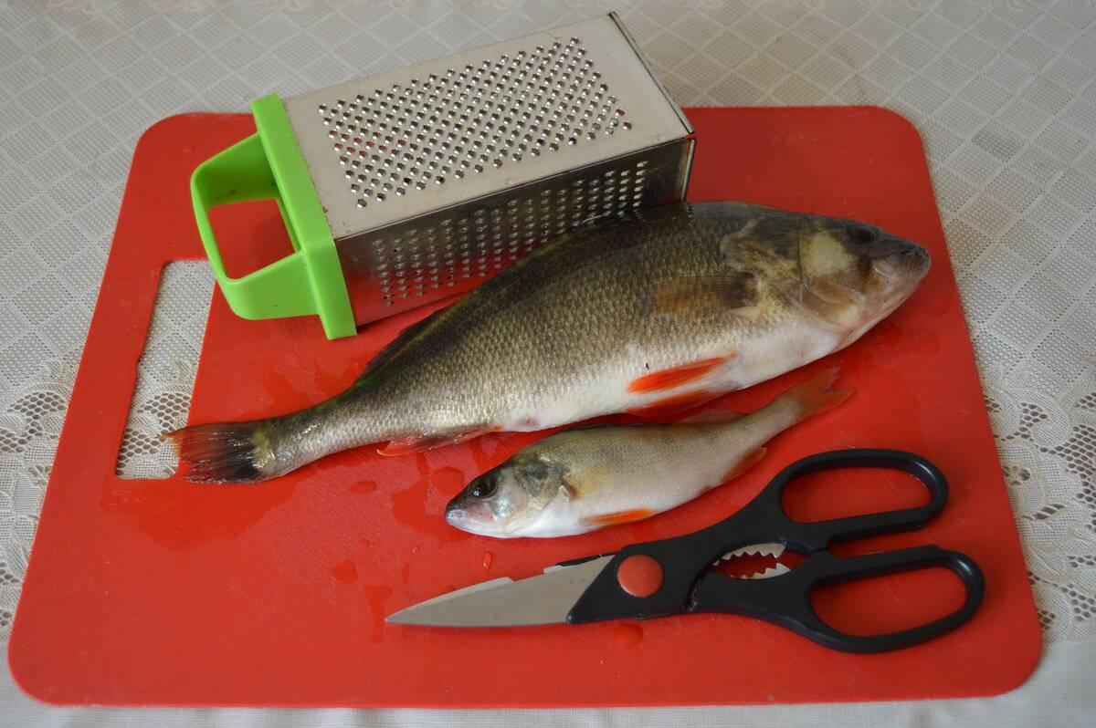 Простые советы о том, как чистить окуня от чешуи: рекомендации рыбаков и домохозяек