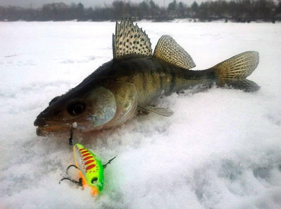 Ловля щуки на балансир зимой - на рыбалке!
