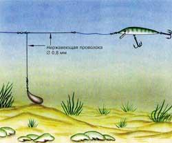Как ловить на воблер: классификация, виды, проводки, советы