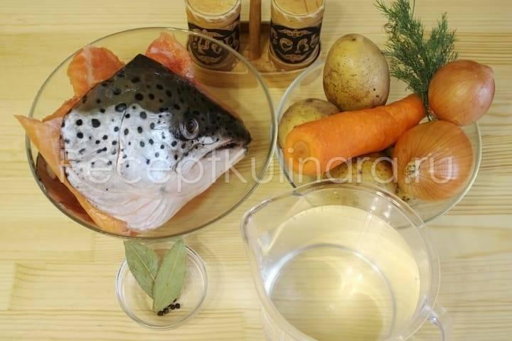 Уха из семги – кулинарный рецепт