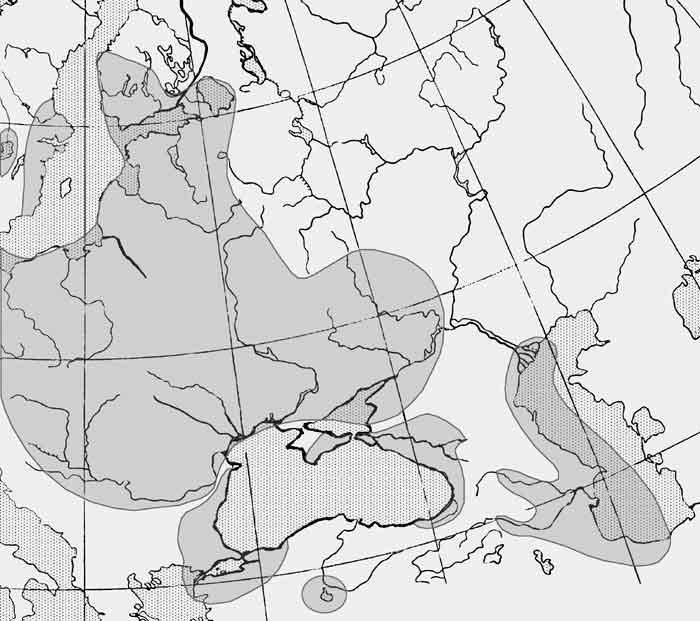 Горчак обыкновенный европейский — rhodeus amarus
