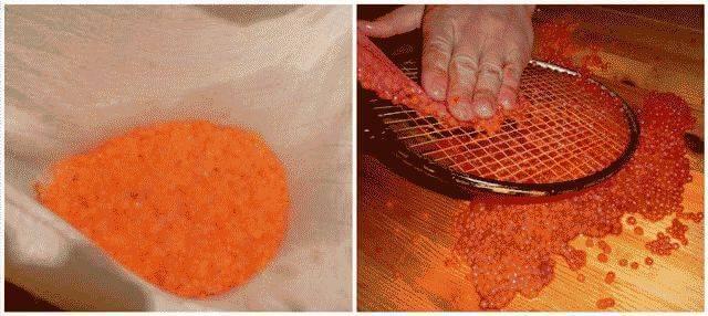 Засолка икры, как засолить домашнюю икру своими руками, рецепт