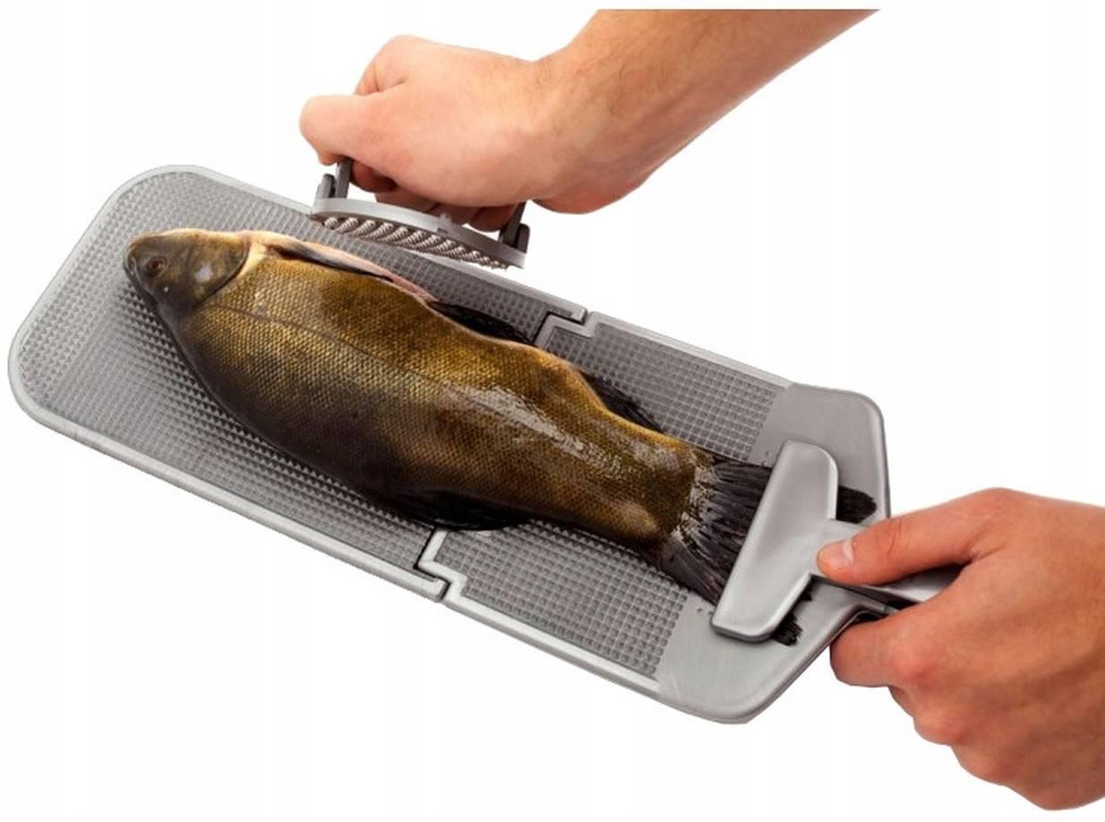 Как быстро почистить рыбу от чешуи – способы, секреты, приспособления