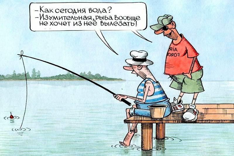 Анекдоты про рыбалку и рыбаков: 50+ отличных шуток