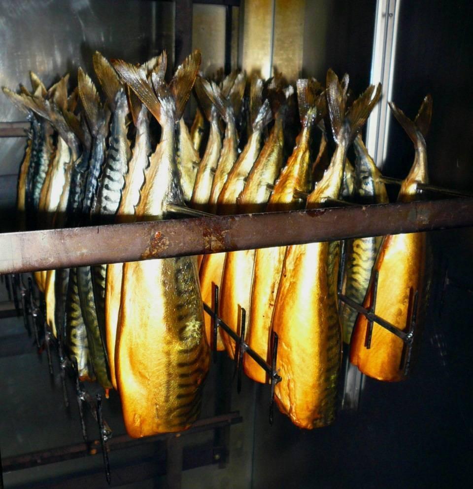 Свое производство копченой рыбы - как начать свое дело?