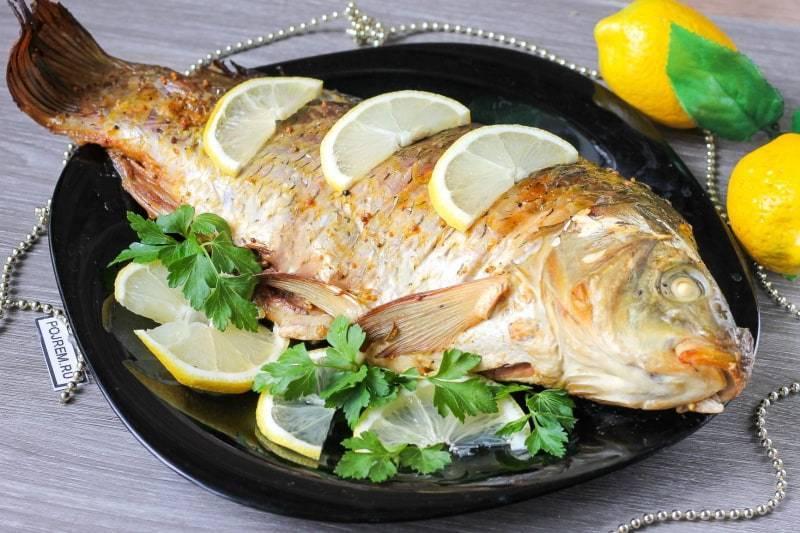 Польза скумбрии - обзор характеристик и состава мяса рыбы (видео и 110 фото)