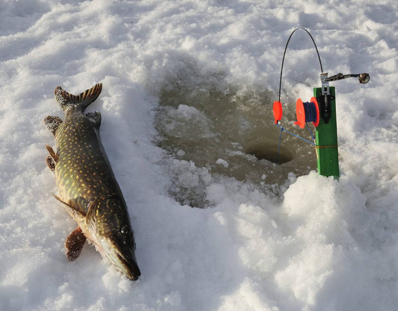 Статьи о рыбалке