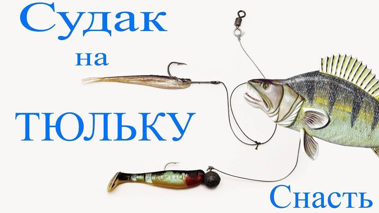 Ловля судака на тюльку зимой какие снасти брать и где ловить