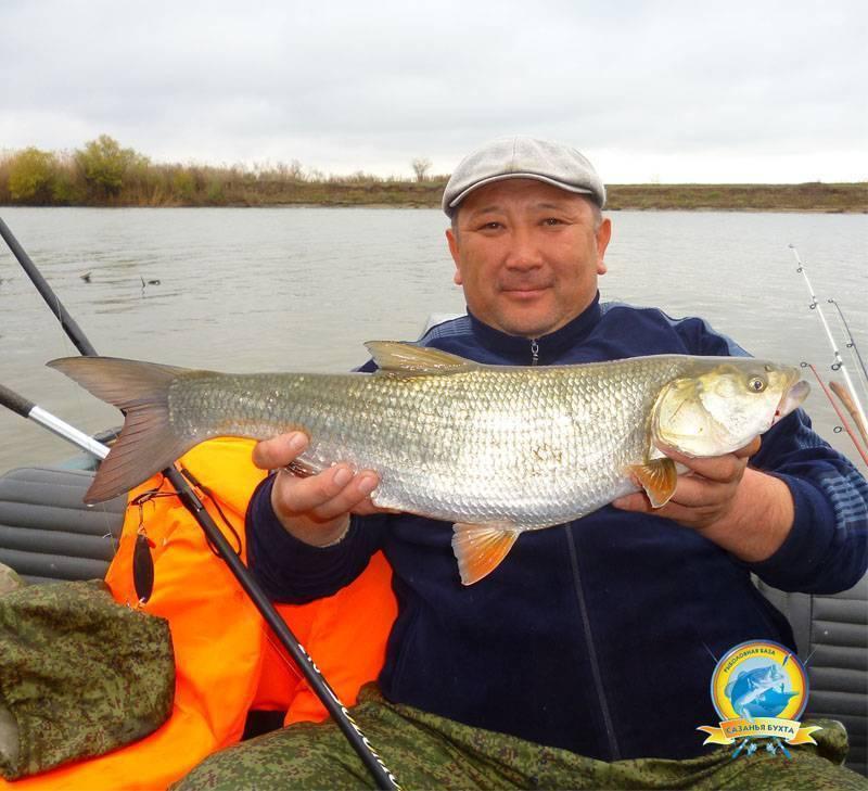 ✅ рыбалка в юдино одинцовский район - рыбзон.рф