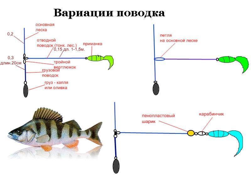 Ловля на отводной поводок от а до я, окунь, судак, щука