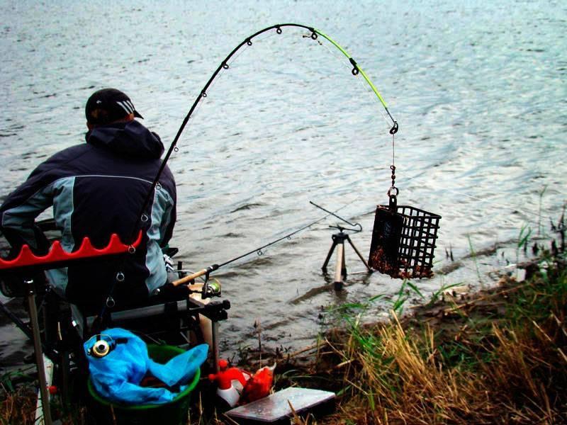 Рыбалка летом: как, где и на что ловить?